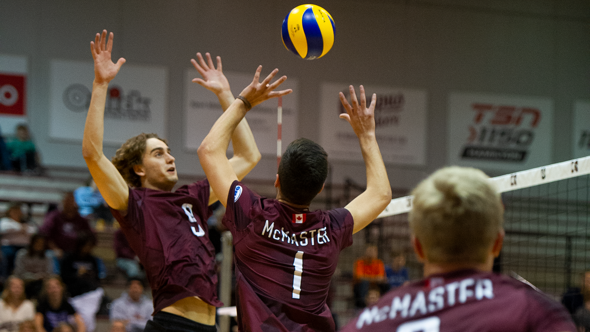men s volleyball mcmaster university athletics